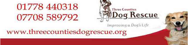 Three Counties Dog Rescue Bourne